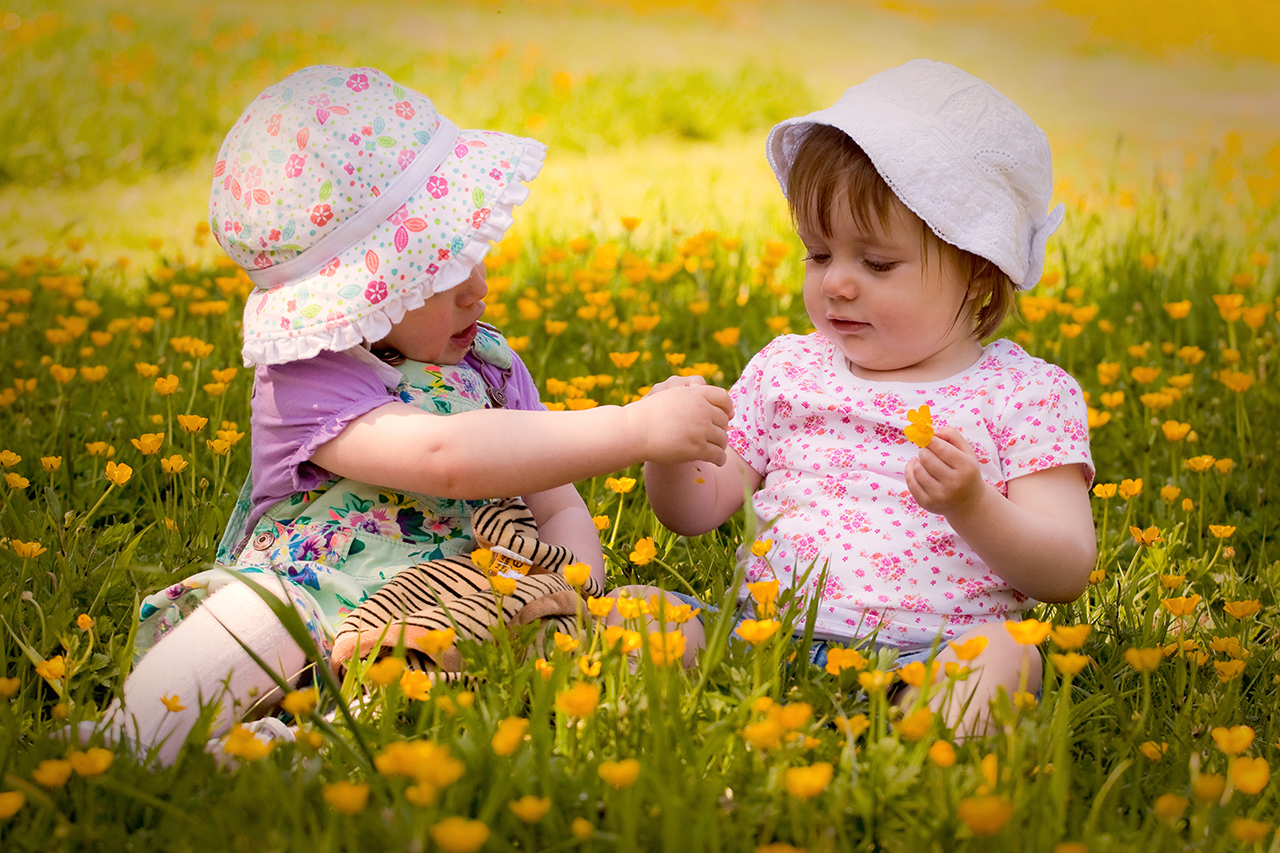 Traci Habergham Photography Huddersfield Toddlers having fun picking buttercups