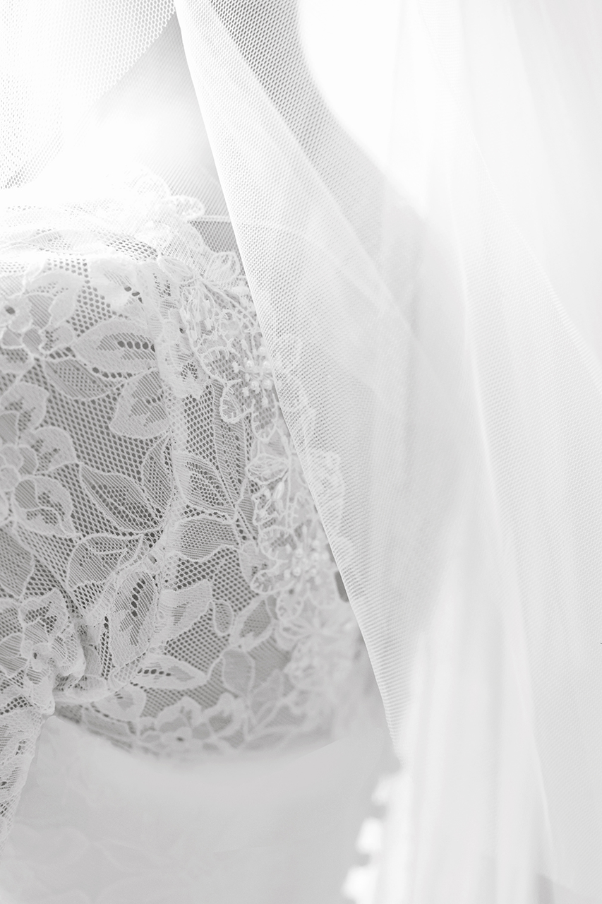 Traci Habergham Photography Wedding Dress