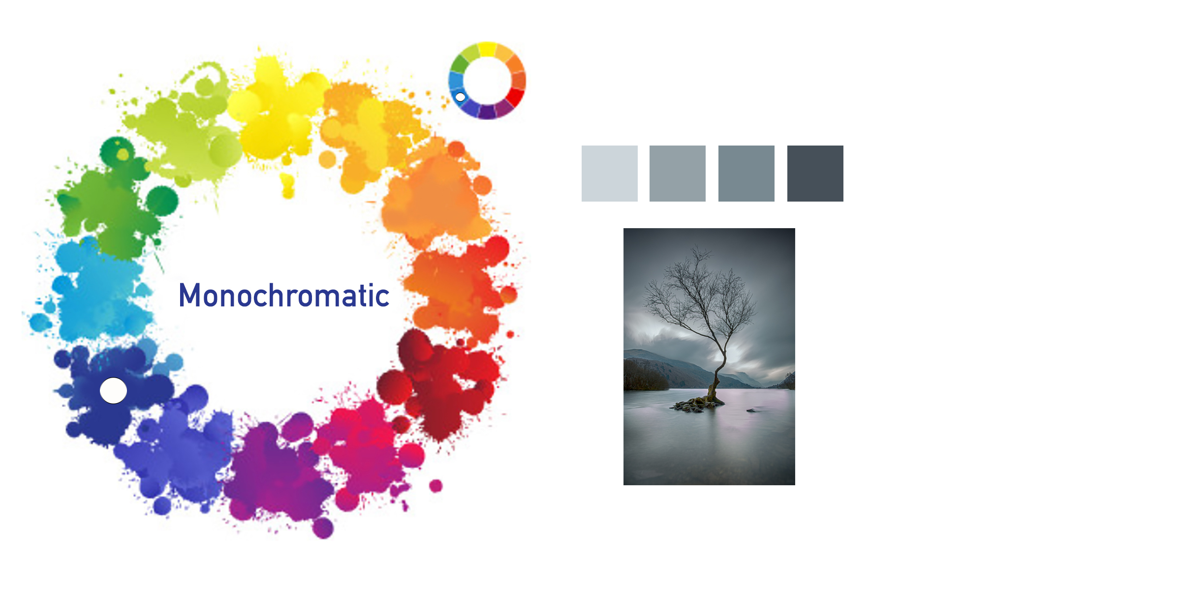 Colour Wheel Monochromatic Photography